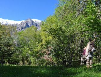 Randonnées dans le Parc National des Ecrins